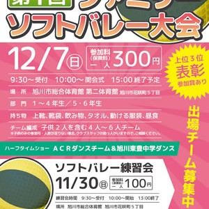 softvolley20141207